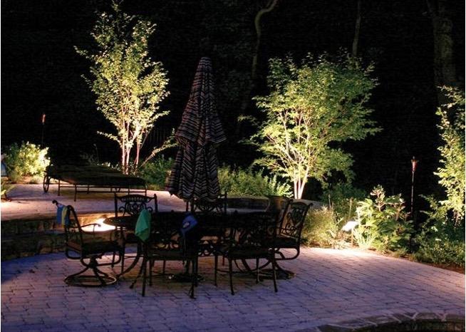 đèn pha chiếu sáng cây cảnh